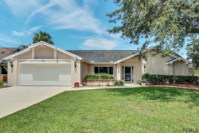 Palm Coast Single Family Home For Sale: 234 Westhampton Dr