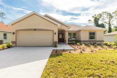 Palm Coast Single Family Home For Sale: 36 Porter Lane