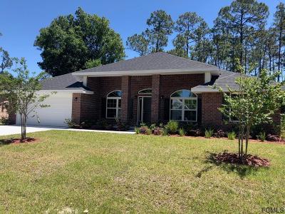 Palm Coast Single Family Home For Sale: 12 Brice Lane