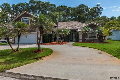 Matanzas Woods Single Family Home For Sale: 8 Lake Placid Pl