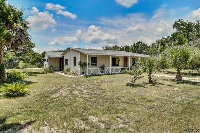 Flagler Beach Single Family Home For Sale: 1860 Flagler Ave S