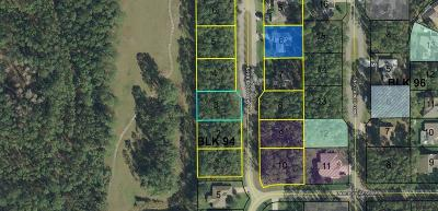 Matanzas Woods Residential Lots & Land For Sale: 7 Lake Success Pl