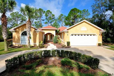 Palm Coast Single Family Home For Sale: 36 Rolling Fern Drive