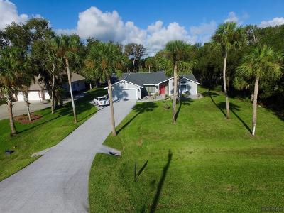 Flagler Beach Single Family Home For Sale: 475 Lambert Ave