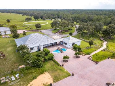 New Smyrna Beach Single Family Home For Sale: 1711 Martin Dairy Road