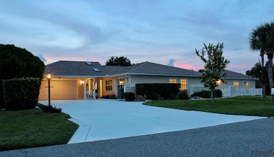 Palm Coast Single Family Home For Sale: 1 Carol Court