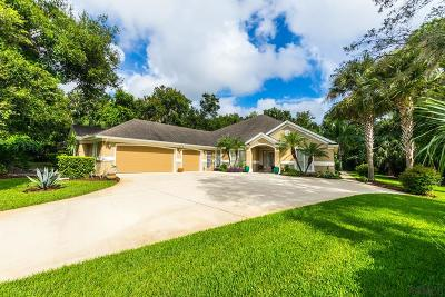 Ormond Beach Single Family Home For Sale: 1483 Pecos Drive