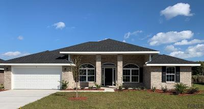 Flagler Beach Single Family Home For Sale: 9 Turtle Ridge Dr