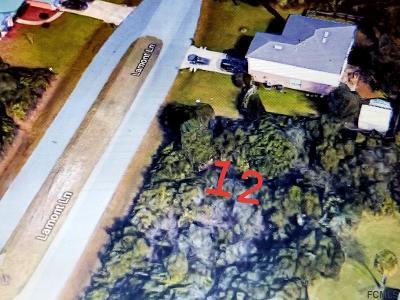Matanzas Woods Residential Lots & Land For Sale: 12 Lamont Lane
