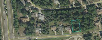 Belle Terre Residential Lots & Land For Sale: 348 Parkview Drive
