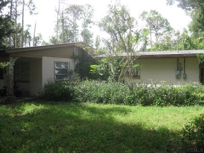 Flagler Beach Single Family Home For Sale: 712 John Anderson Hwy