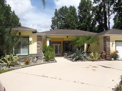 Palm Coast Single Family Home For Sale: 8 Fenhill Lane