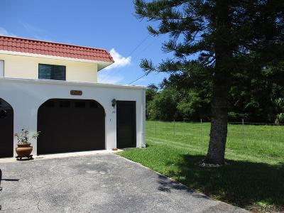 Flagler Beach Condo/Townhouse For Sale: 87 Ocean Palm Villas S #87