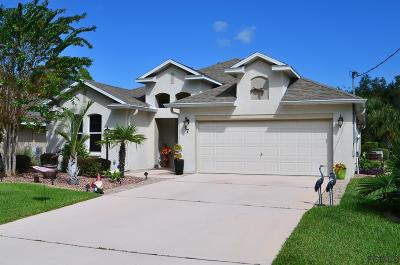 Palm Coast Single Family Home For Sale: 7 Clear Court