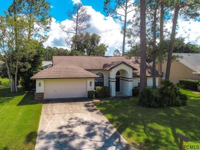 Palm Coast Single Family Home For Sale: 58 Westover Lane
