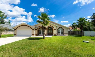 Palm Coast Single Family Home For Sale: 9 Ranber Place