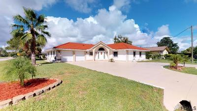 Palm Coast Single Family Home For Sale: 1 Coral Reef Ct N