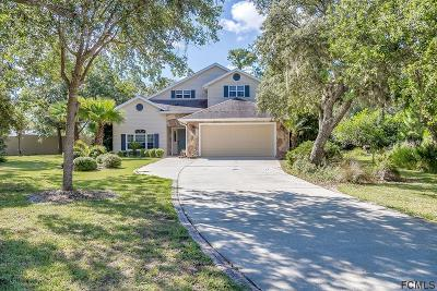 Flagler Beach Single Family Home For Sale: 505 Emerald Dr