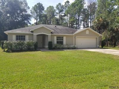 Palm Coast Single Family Home For Sale: 13 Seckel Court
