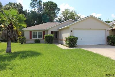 Palm Coast Single Family Home For Sale: 28 Prosperity Lane