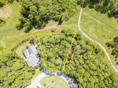 Matanzas Woods Residential Lots & Land For Sale: 75 Lake Success Dr