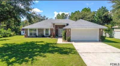 Palm Coast Single Family Home For Sale: 17 Buffalo View Lane