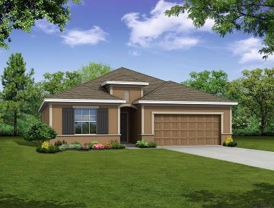 Palm Coast Single Family Home For Sale: 15 Robin Hood Lane