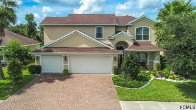 Palm Coast Single Family Home For Sale: 153 Arena Lake Dr