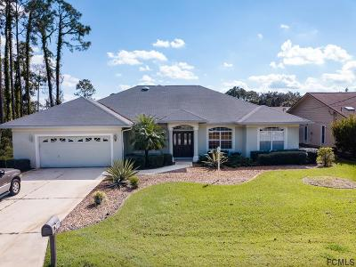 Palm Coast Single Family Home For Sale: 70 Westchester Ln