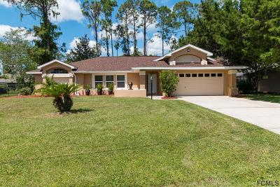 Palm Coast Single Family Home For Sale: 39 Pepper Lane