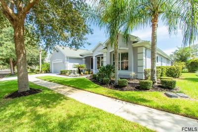 Palm Coast Single Family Home For Sale: 33 Osprey Cir