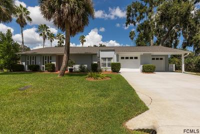 Palm Coast Single Family Home For Sale: 51 Farraday Lane