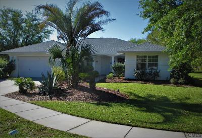 Palm Coast Single Family Home For Sale: 42 Cedar Point Dr
