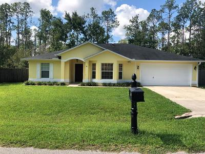 Palm Coast Single Family Home For Sale: 30 Richfield Ln