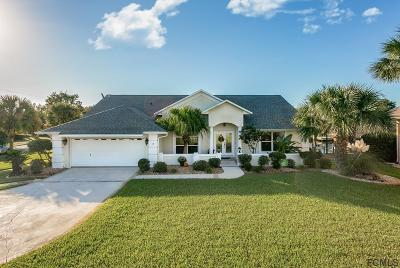 Palm Coast Single Family Home For Sale: 3 Collingville Court