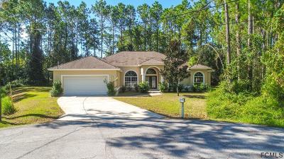 Palm Coast Single Family Home For Sale: 10 Ryecorn Place