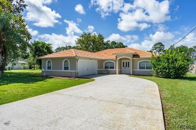 Palm Coast Single Family Home For Sale: 169 Belleaire Dr