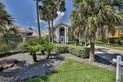 Ormond Beach Single Family Home For Sale: 3548 John Anderson Dr