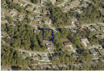 Pine Lakes Residential Lots & Land For Sale: 14 White Birch Lane