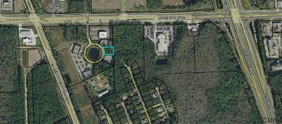 Commercial Lots & Land For Sale: 130 Pinnacles Dr
