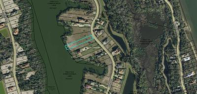 Palm Coast FL Residential Lots & Land For Sale: $119,000