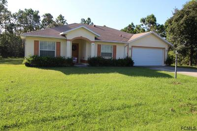 Palm Harbor Single Family Home For Sale: 14 Frenora Lane