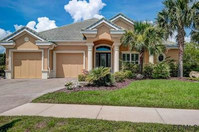 Palm Coast Single Family Home For Sale: 41 N Lakewalk Dr N