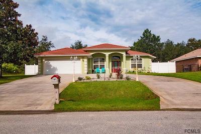Palm Coast Single Family Home For Sale: 29 Farmsworth Drive