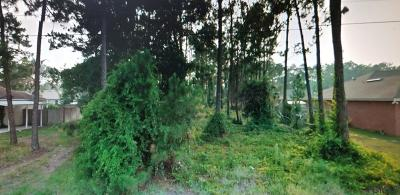 Lehigh Woods Residential Lots & Land For Sale: 18 Ryberry Drive