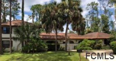 Palm Coast Single Family Home For Sale: 326 Wellington Drive