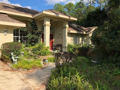 Palm Coast Single Family Home For Sale: 17 Wayland Place
