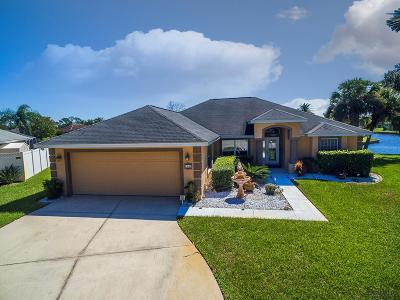 Palm Harbor Single Family Home For Sale: 14 Chelsea Court