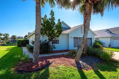 Palm Coast Single Family Home For Sale: 48 Medford Drive