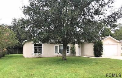 Palm Coast Single Family Home For Sale: 66 Randolph Dr